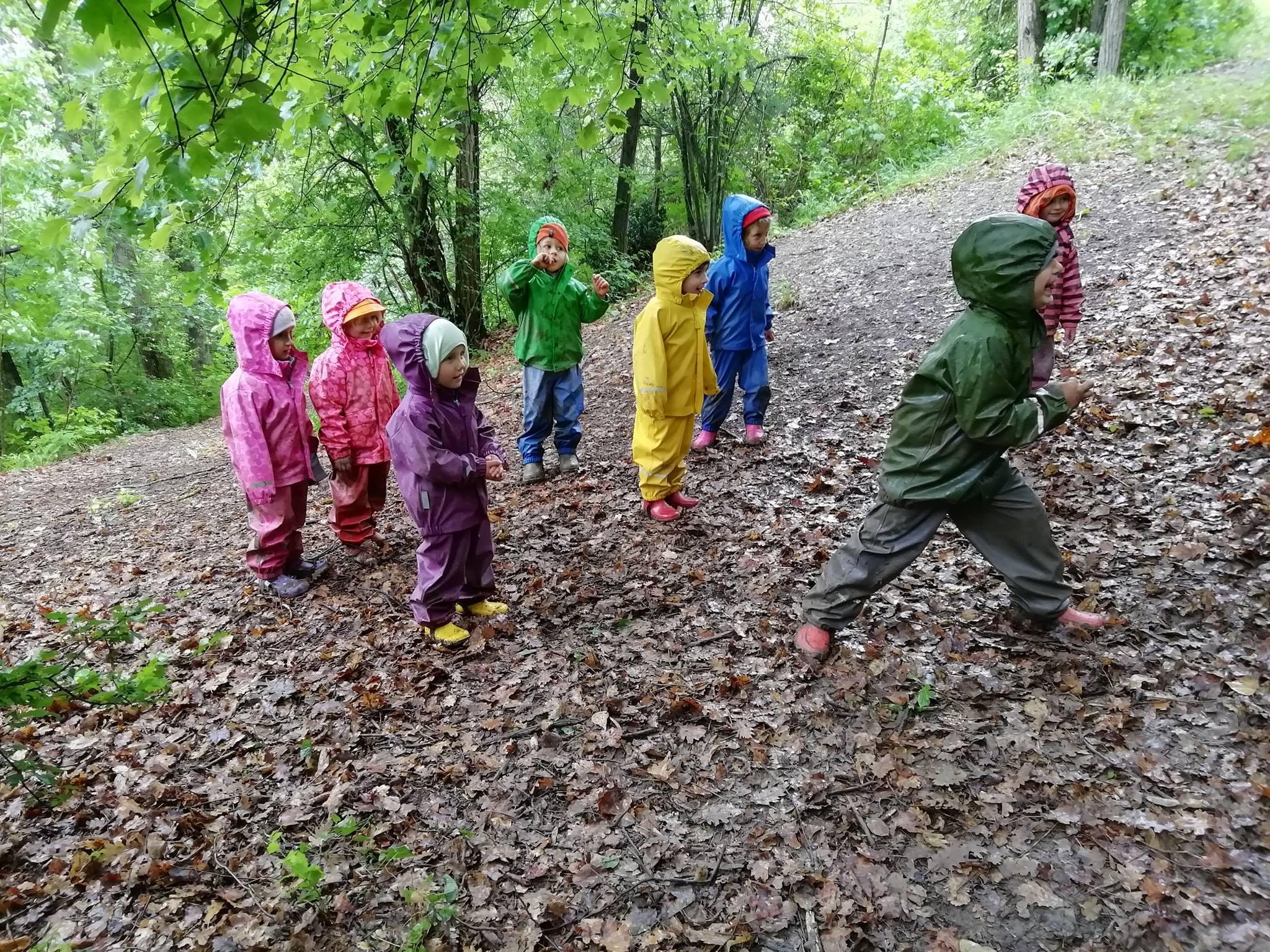 L'asilo nel bosco: a Pianoro i bambini imparano giocando all'aria aperta - il Digitale
