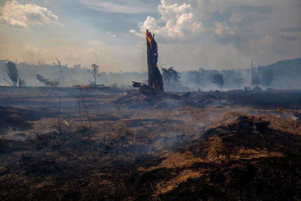 Incendi amazzonia 2019