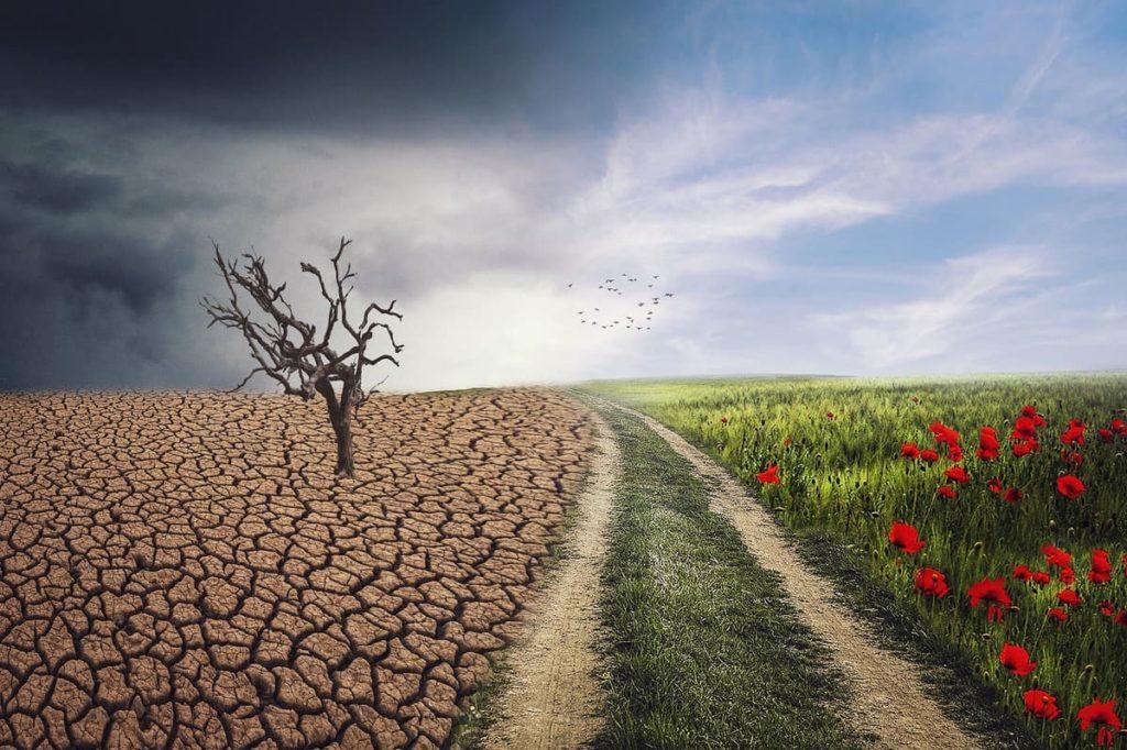 Cambiamento climatico come prima battaglia