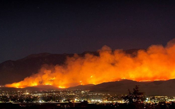 Incendi Italia 2020