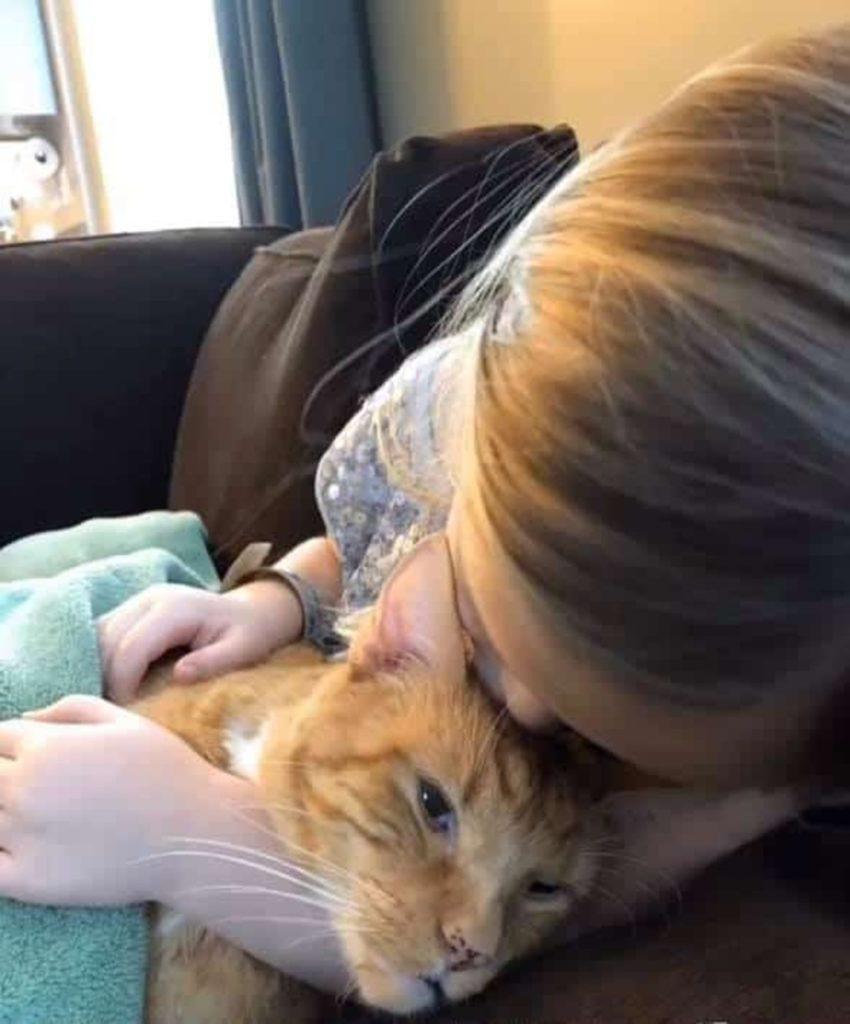 Il gatto Bailey con Abby