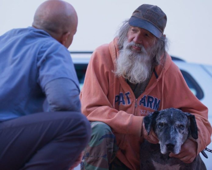 Veterinario cura gratis animali dei senza tetto