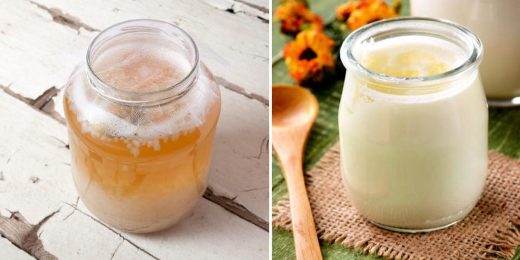 A sinistra vasetto con kefir d'acqua, a sinistra vasetto con kefir di latte.