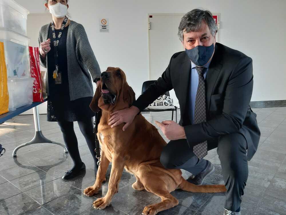 Cani anti-Covid a Cuneo.