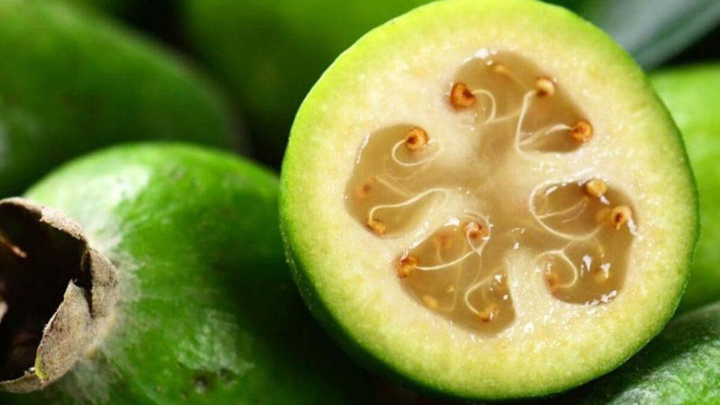 frutti esotici_feijoa