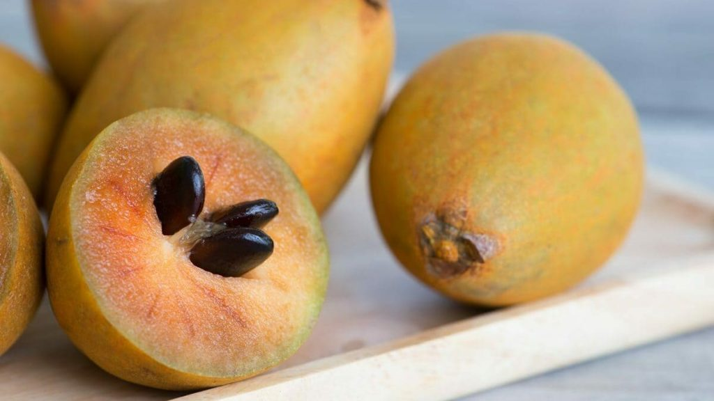 frutti esotici_sapodilla