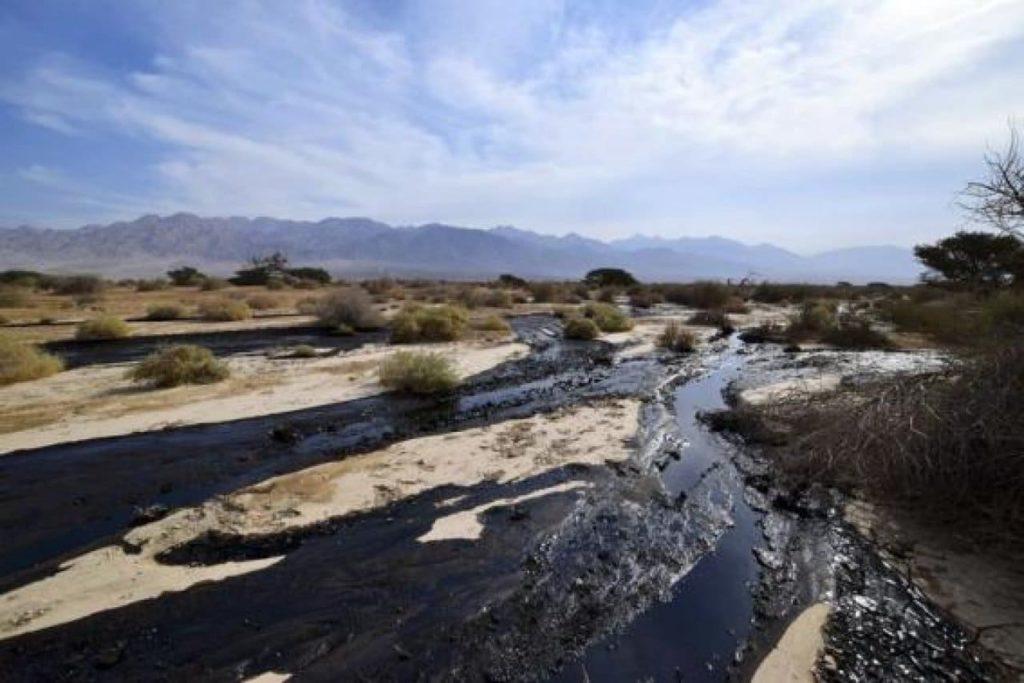 disastro ambientale in israele