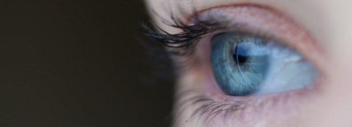sistema visivo