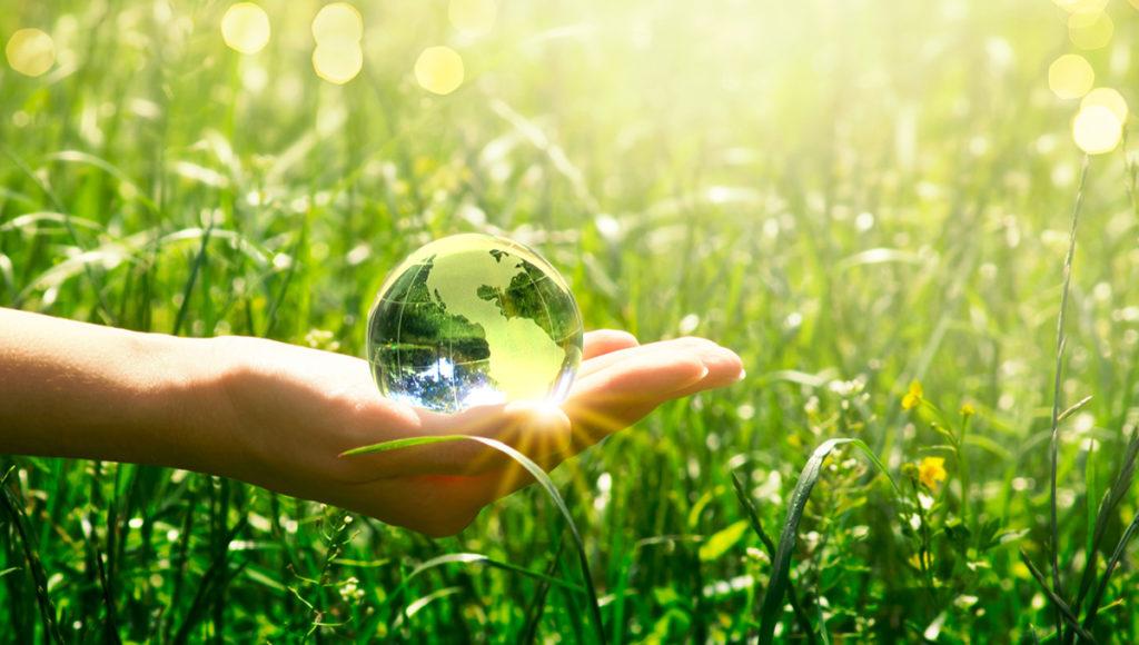 Giornata Mondiale Zero Emissioni