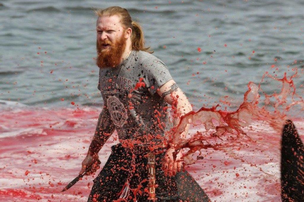 """Delfini massacrati alle Isole Faroe: """"La maggior parte finirà nella spazzatura o in un buco a terra"""""""